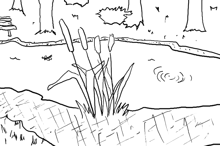 Pond Coloring Pages Coloring Pages