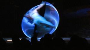 Alegria Cirque du Soleil Raleigh, NC