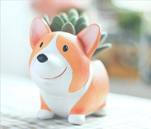 This is the most adorable tiny corgi planter just made to sit on a desk with an even smaller succulent and is the perfect Valentine's Day gift.