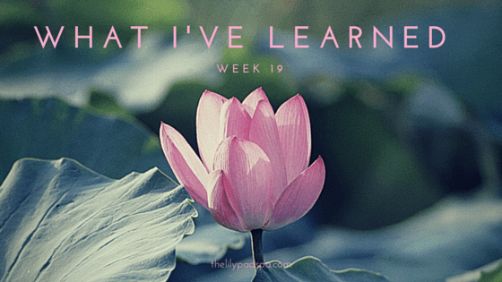 What I've Learned -- Week 19.