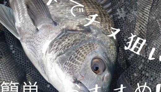 サイトでかに餌使ってチヌ釣りに必要な思考と、その道具