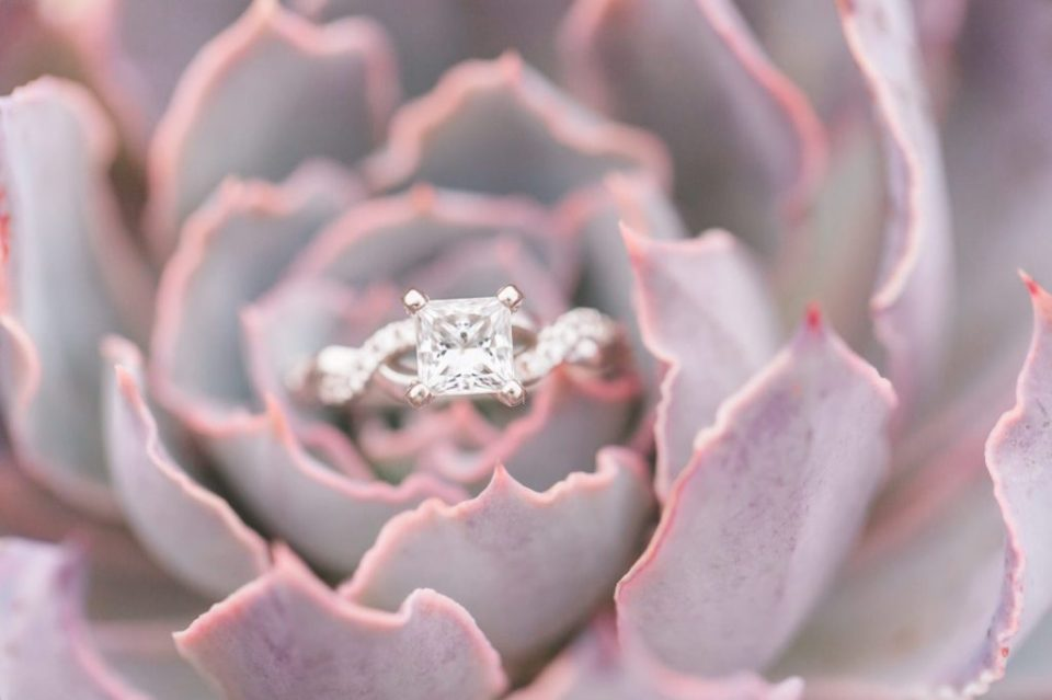Shane Co Engagement ring in succulent