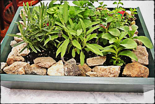 How to Make a Wooden Planter Box 1