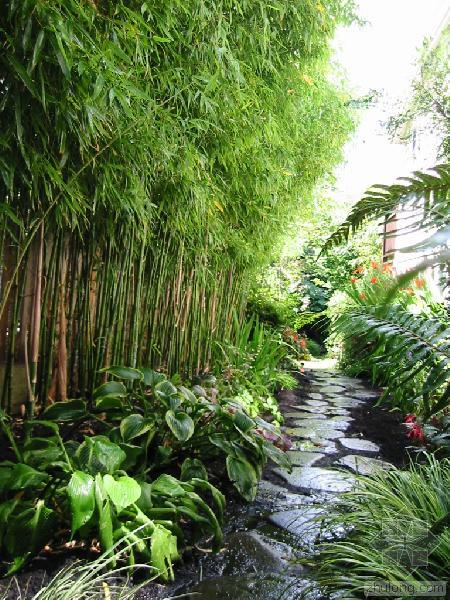 Basic Landscaping Ideas