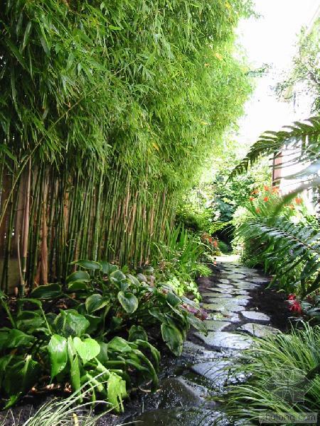 8 gardens bamboo award
