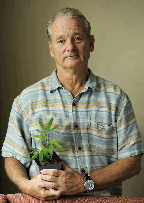 bill-murray-really-is-the-most-interesting-man-in-the-world-9