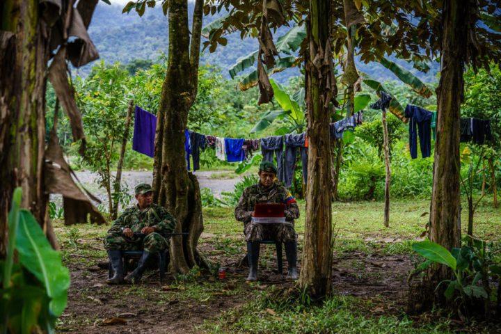 En medio de una platanera de algún lugar en el que es borroso el limite entre el Chocó y Antioquia Pedro Baracutao jefe del frente 34 de las FARC (dercha) y Melkin (izquierda) realizan algunas tareas de inteligencia y cordinación en su computador. Foto: Federico Rios