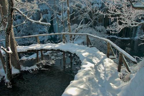 Walking true the Winterwonderland !