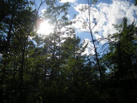 20090700_Michigan_UP_vacation_480