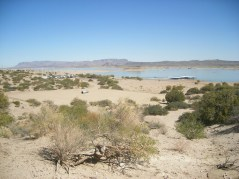 2011October00NMTrip_elephantButte05