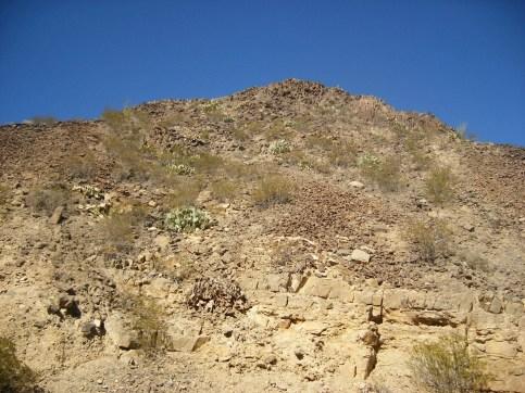 2011October00NMTrip_paleozoicTrackways06