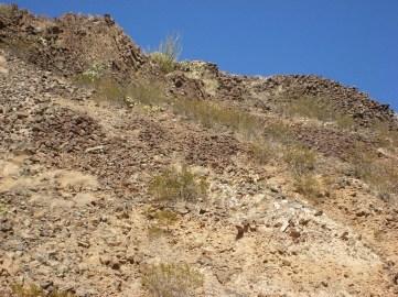 2011October00NMTrip_paleozoicTrackways07