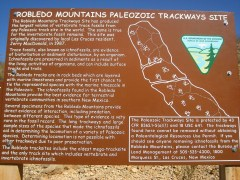 2011October00NMTrip_paleozoicTrackways14
