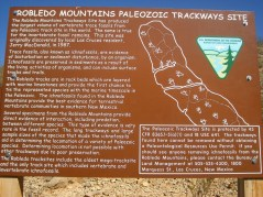 2011October00NMTrip_paleozoicTrackways15