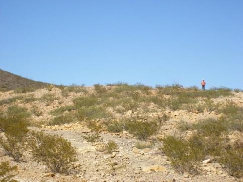 2011October00NMTrip_paleozoicTrackways17