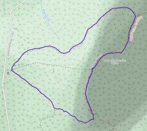GaiaGPS hiking data @ Max Patch Mountain