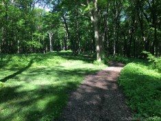 Effigy Mounds National Monument - Compound mounds