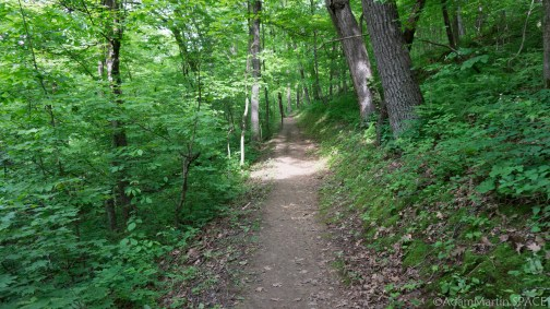 Wyalusing State Park - Sand Cave Trail