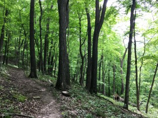 Wyalusing State Park - Big Sand Cave spur trail