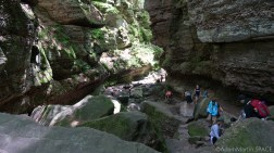 Parfrey's Glen State Natural Area