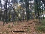 Lake Wissota State Park - Beaver Meadow Nature Trail