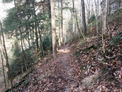 Cummins Falls State Park - Trail leading down to the riverway
