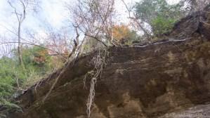 Cummins Falls State Park - Walking under the rock ledge