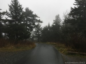 Clingmans Dome - Paved trail view