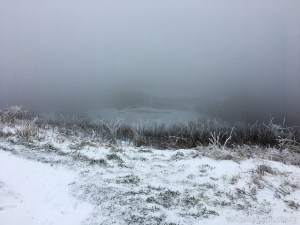 Max Patch Mountain - View at the top
