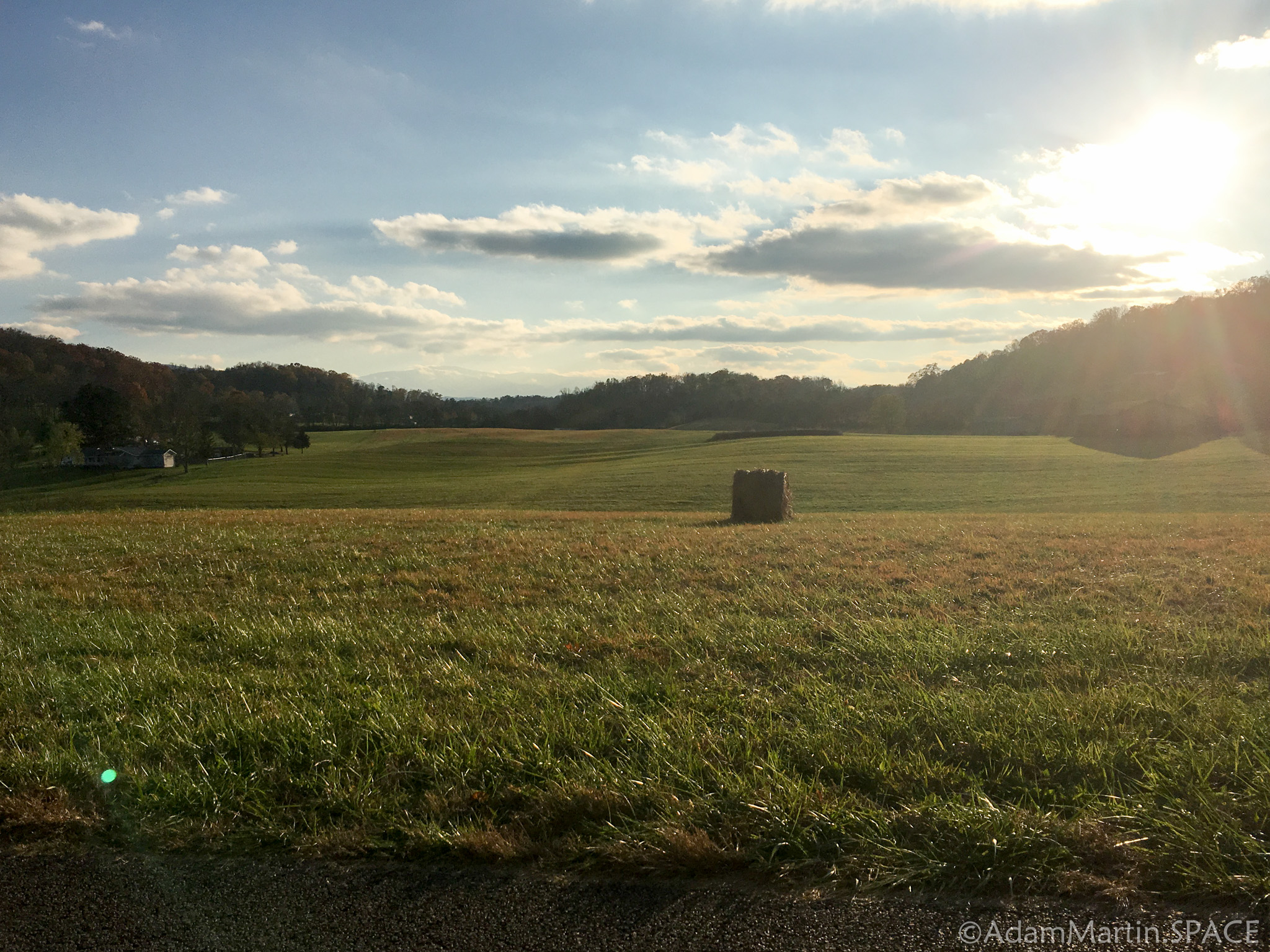 Newport, TN - Sunny views across a field