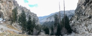 Mount Charleston - View down the canyon from Mary Jane Falls