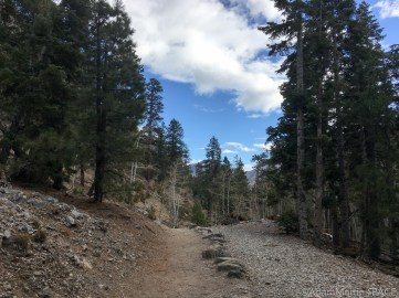 Mount Charleston - Mary Jane Falls trail easy at the beginning