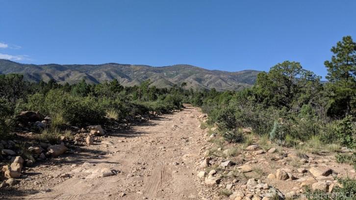 New Mexico Elk Hunt – 4x4 Roads
