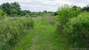 Richard Bong State Recreation Area - Prairie view on blue trail