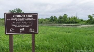 Richard Bong State Recreation Area - Orchard Pond restoration sign