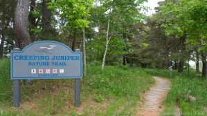 Kohler-Andrae State Park - Creeping Juniper Nature Trail trailhead