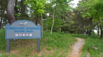 Kohler-Andrae State Park - Creeping Juniper Nature Trail trailhead