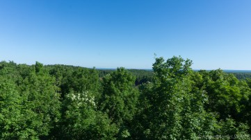 Copper Falls State Park - View from observation tower on CCC trail