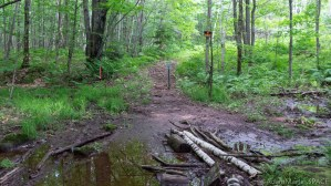 Interstate Falls - Path to Peterson Falls now private