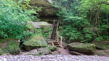 Twin Falls - Wooden staircase leading up from the creek bottom