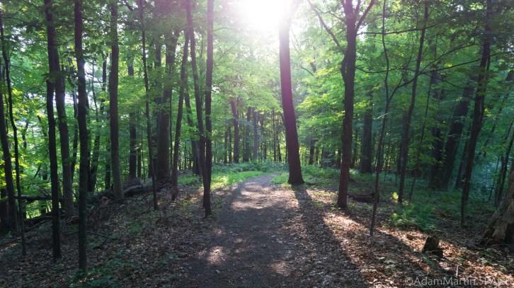 Interstate State Park - Horizon Rock Trail / Ice Age Trail segment