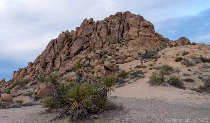 Joshua Tree - Mastodon Peak