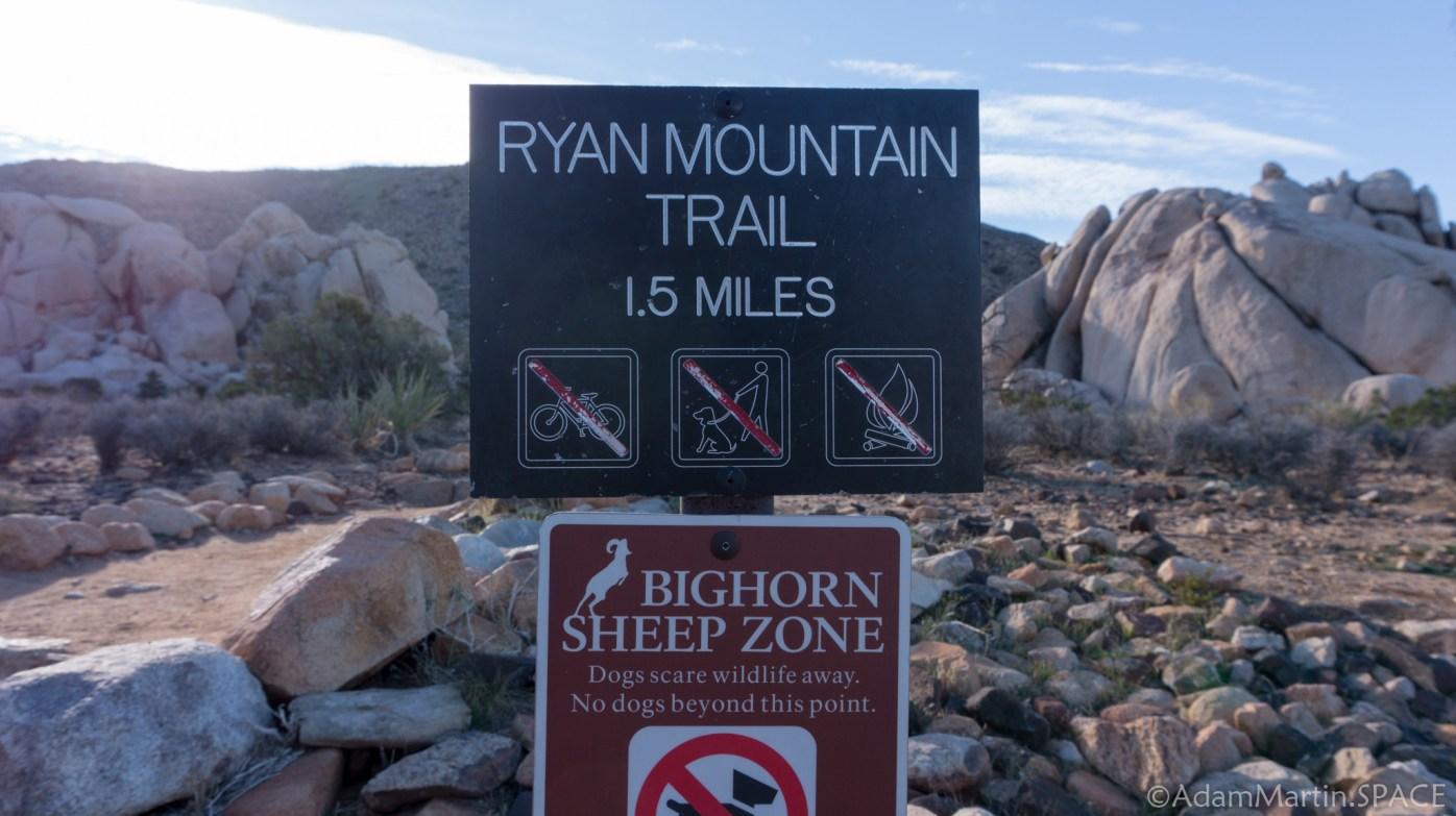 Joshua Tree - Ryan Mountain Trail Head