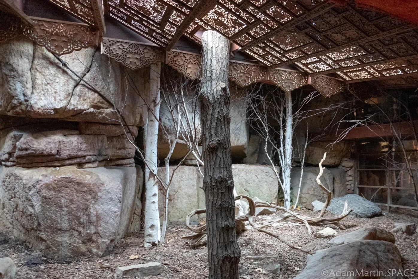 House On The Rock - Interior Rooms With Trees Growing Through