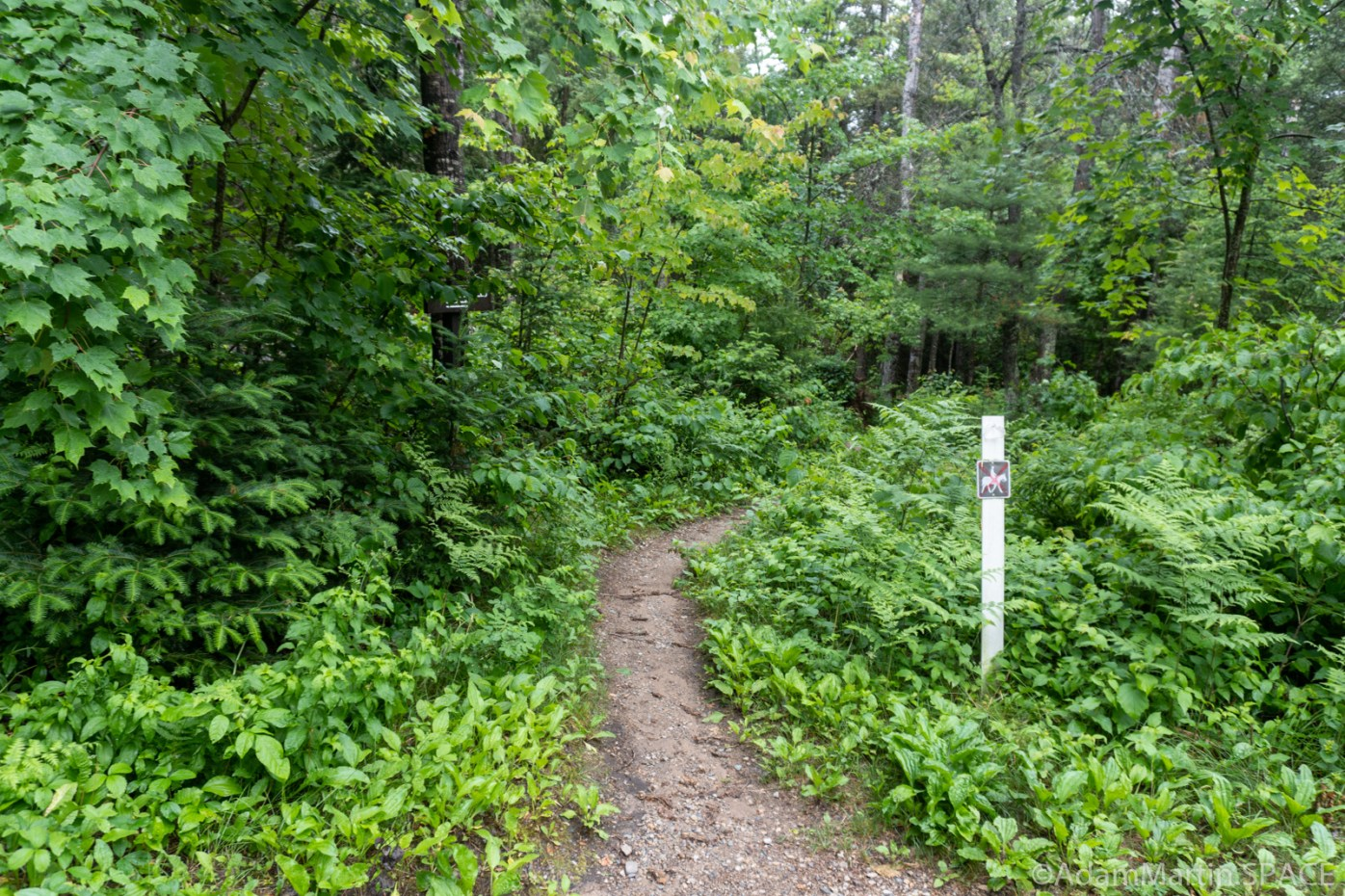 Horseshoe Falls - Trail starts in very good condition