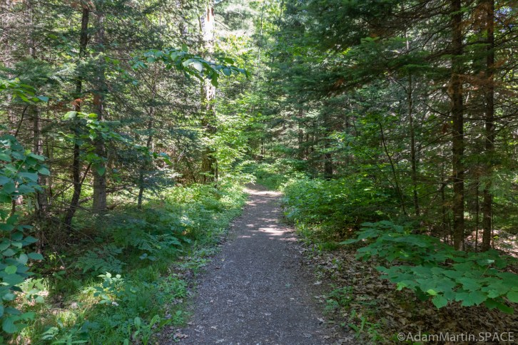 LaSalle Falls - Trail to the falls