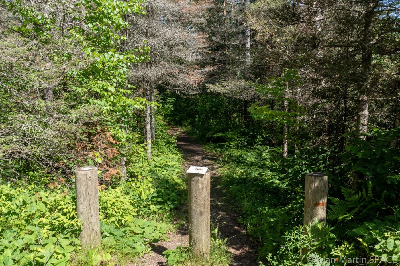 Washburn Falls - Trail head