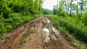 Rouse Falls - Muddy wrong path