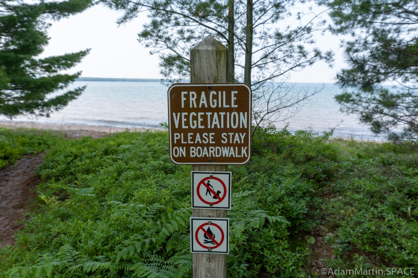 "Big Bay State Park - Boardwalk Trail ""Fragile Vegetation"" sign"