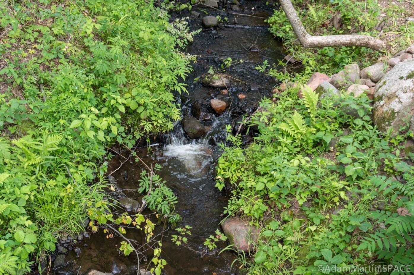 Lake Wissota Rapids - Tiny falls off the trailside